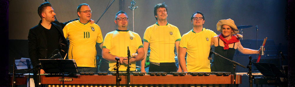 BUMfest is the only Slovenian percussion festival